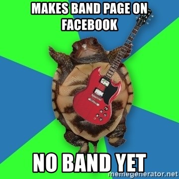 Aspiring Musician Turtle - Makes band page on facebook no band yet