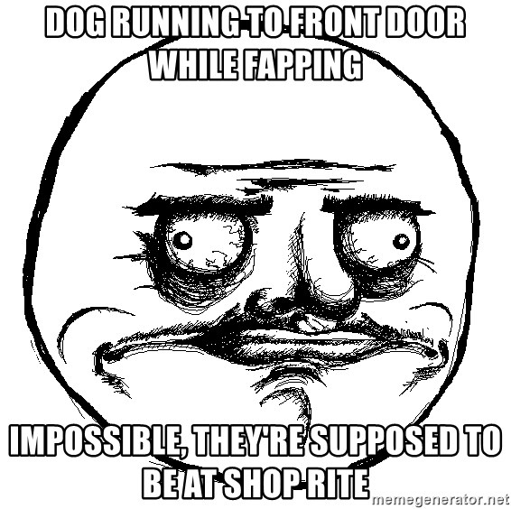 Me Gusta Ships - dog running to front door while fapping Impossible, they're supposed to be at shop rite
