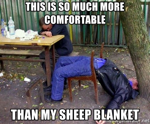 drunk - This is so mUch more comfortablE Than my sheep blanKet