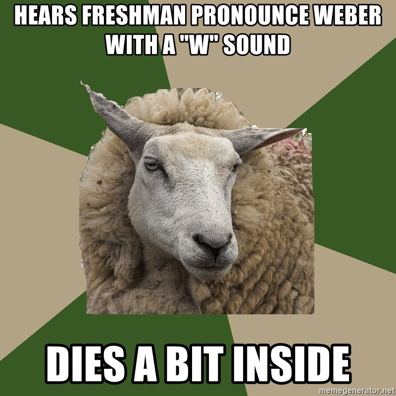 "Sociology Student Sheep - Hears Freshman pronounce Weber with a ""w"" sound Dies A bit inside"