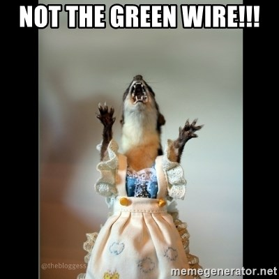Juanita Weasel - NOT THE GREEN WIRE!!!