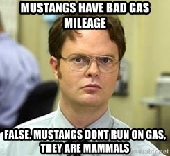 Dwight Shrute - mustangs have bad gas mileage false. mustangs dont run on gas, they are mammals