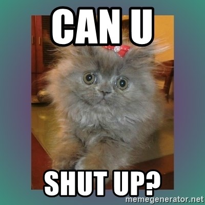 cute cat - can u  shut up?
