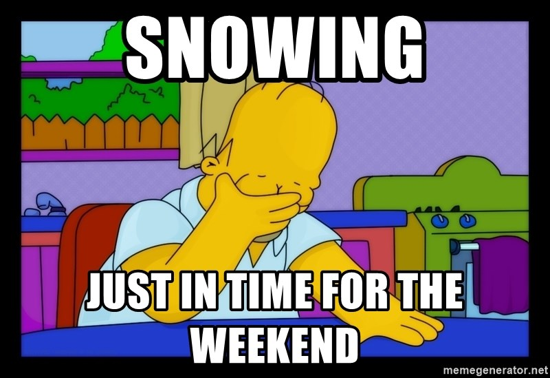 Homer Facepalm - Snowing Just in time for the weekend