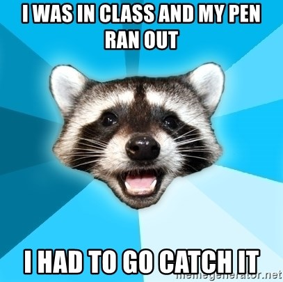 Lame Pun Coon - i was in class and my pen ran out i had to go catch it