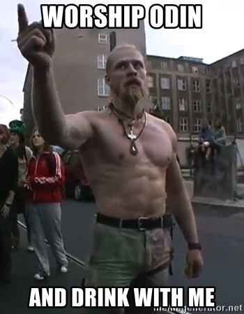 Techno Viking - worship odin and drink with me