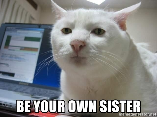 Serious Cat - be your own sister