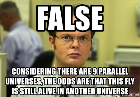 False guy - false considering there are 9 parallel universes, the odds are that this fly is still alive in another universe