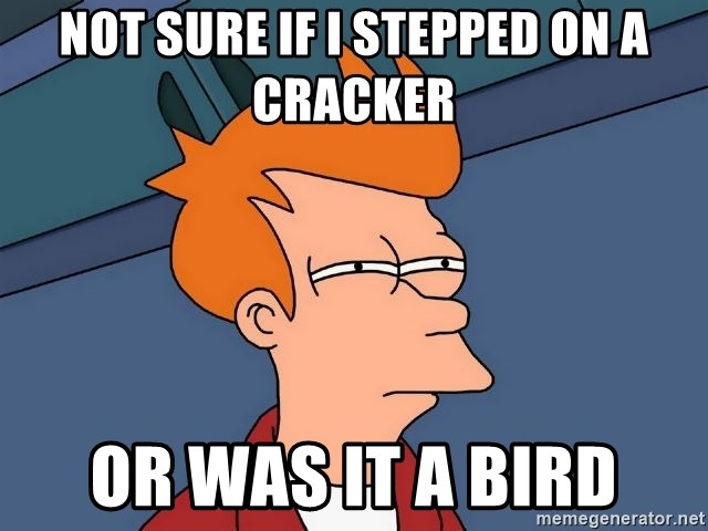 Futurama Fry - not sure if i stepped on a cracker or was it a bird