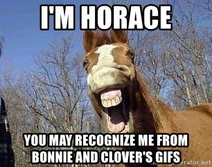 Horse - I'M HORACE YOU MAY RECOGNIZE ME FROM BONNIE AND CLOVER'S GIFS
