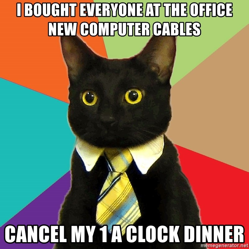 Business Cat - I bought everyone at the office new computer cables cancel my 1 a clock dinner