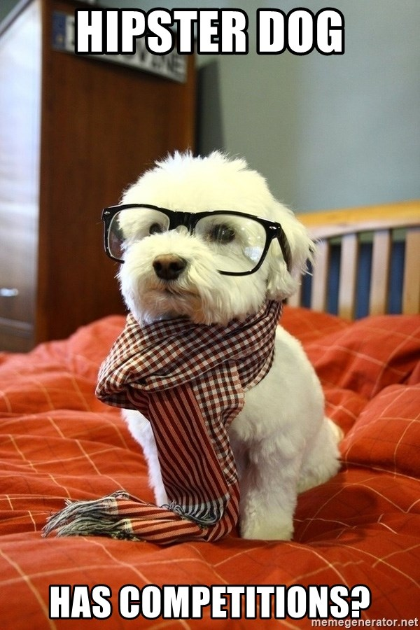 hipster dog - Hipster dog Has competitions?