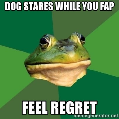 Foul Bachelor Frog - Dog stares while you fap Feel regret