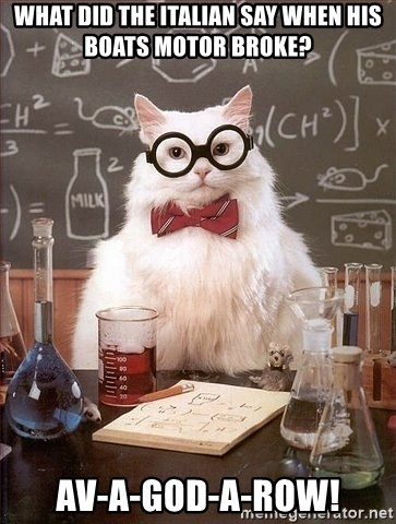 Chemistry Cat - What did the Italian say when his boats motor broke? Av-a-god-a-row!