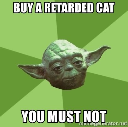 Advice Yoda Gives - buy a retarded cat you must not