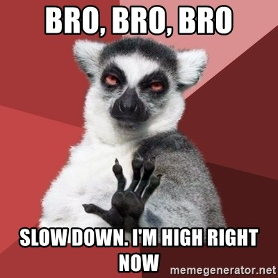 Chill Out Lemur - bro, bro, bro slow down. i'm high right now