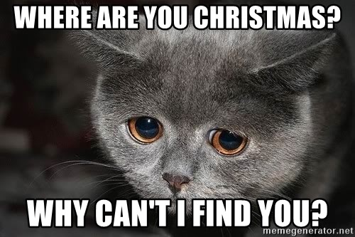 Sadcat - Where are you Christmas? why can't i find you?