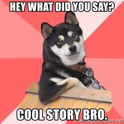Cool Dog - Hey what did you say? cool story bro.