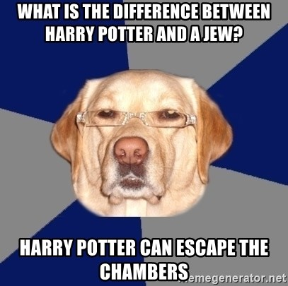 Racist Dawg - What is the difference between Harry Potter and a jew? Harry Potter can escape the chambers