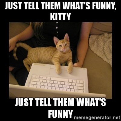 Freelance Writer Kitten - just tell them what's funny, kitty just tell them what's funny