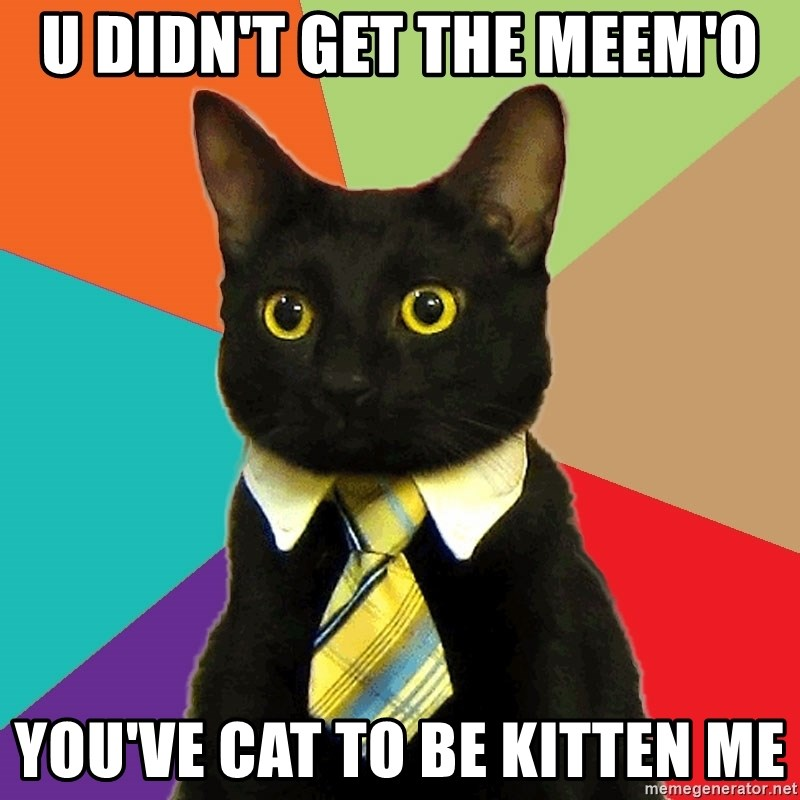Business Cat - u didn't get the meem'o you've cat to be kitten me