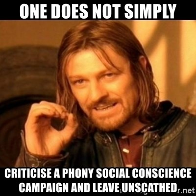 Does not simply walk into mordor Boromir  - one does not simply criticise a phony social conscience campaign and leave unscathed