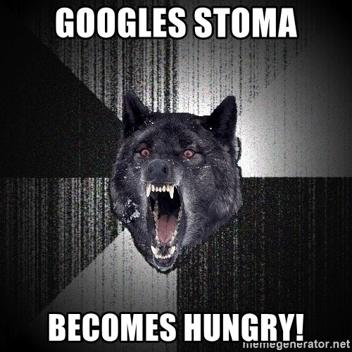 Insanity Wolf - GOOGLES STOMA Becomes hungry!