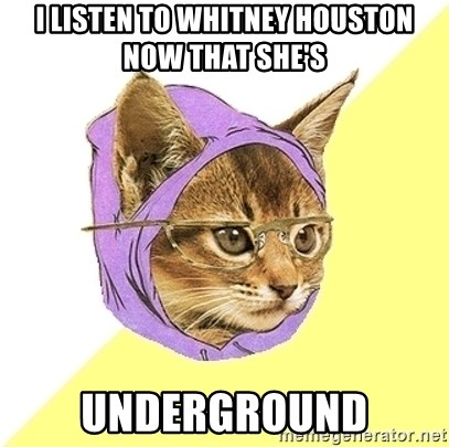 Hipster Kitty - i listen to whitney houston now that she's underground