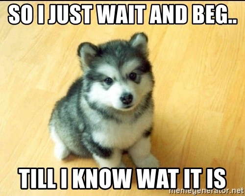 Baby Courage Wolf - so i just wait AND BEG..  till i know wat it is