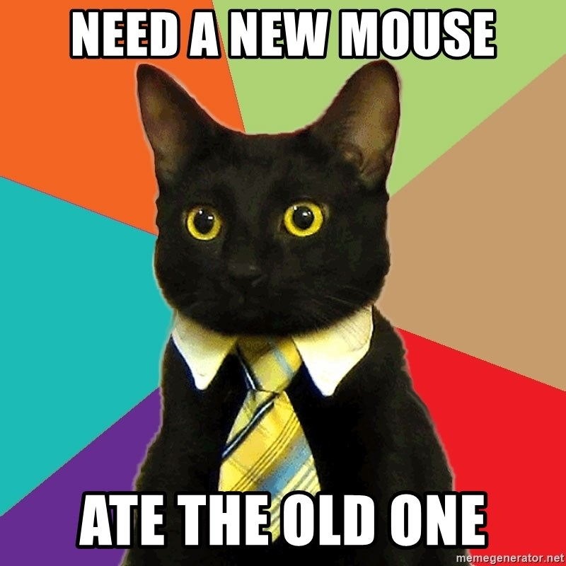 Business Cat - Need a new mouse Ate the old one