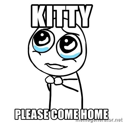 pleaseguy  - Kitty Please Come home