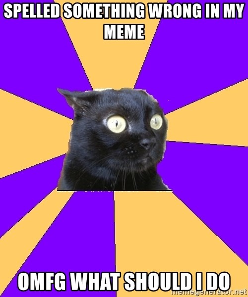 Anxiety Cat - Spelled something wrong in my meme omfg what should I do