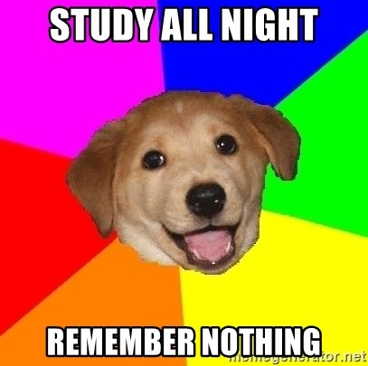 Advice Dog - study all night remember nothing