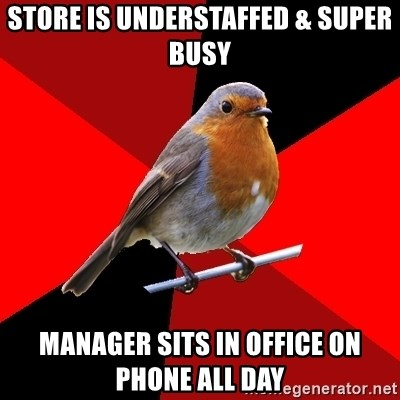 Retail Robin - store is understaffed & super busy manager sits in office on phone all day
