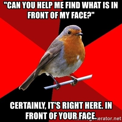 "Retail Robin - ""Can you help me find what is in front of my face?"" Certainly, it's right here. in front of your face."