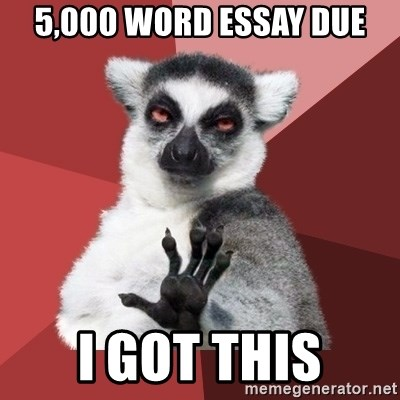 Chill Out Lemur - 5,000 word essay due i got this