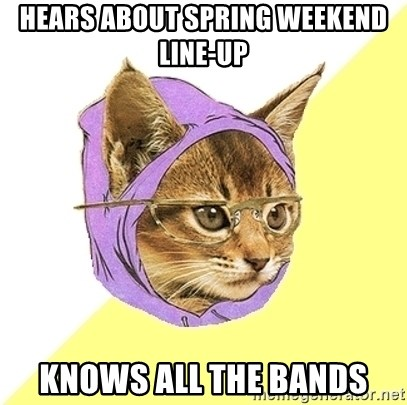 Hipster Kitty - hears about spring weekend line-up knows all the bands