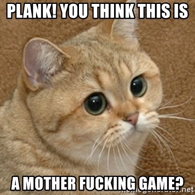 motherfucking game cat - Plank! You Think this is A Mother Fucking Game?