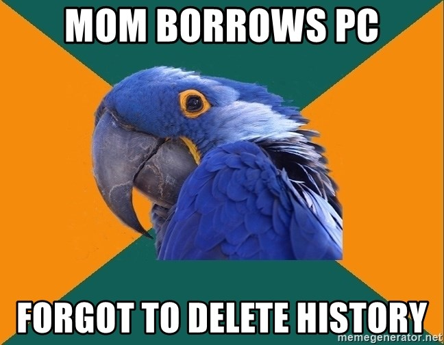 Paranoid Parrot - mom borrows pc forgot to delete history