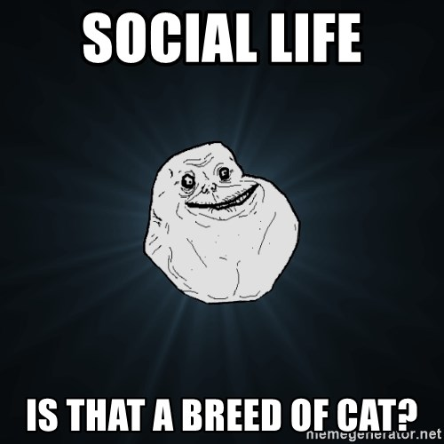 Forever Alone - social life is that a breed of cat?