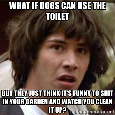 Conspiracy Keanu - what if dogs can use the toilet but they just think it's funny to shit in your garden and watch you clean it up?