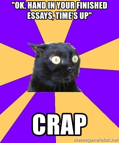 Ok Hand In Your Finished Essays Times Up Crap  Anxiety  Meme  Ok Hand In Your Finished Essays Times Up Crap  Anxiety  Meme  Generator English Essay Speech also Calculus Help  High School Narrative Essay