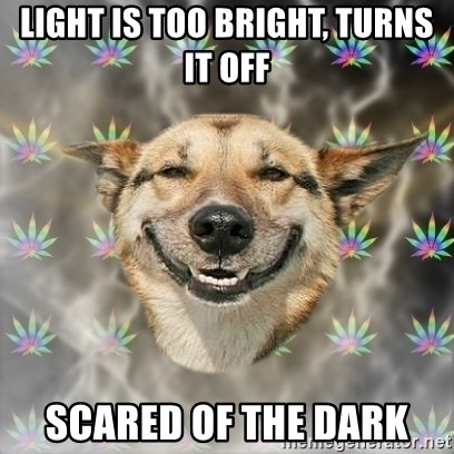 Stoner Dog - light is too bright, turns it off scared of the dark