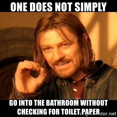 Does not simply walk into mordor Boromir  - ONE DOES NOT SIMPLY  GO INTO THE BATHROOM WITHOUT CHECKING FOR TOILET PAPER