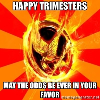 Typical fan of the hunger games - HAppy trimesters may the odds be ever in your favor