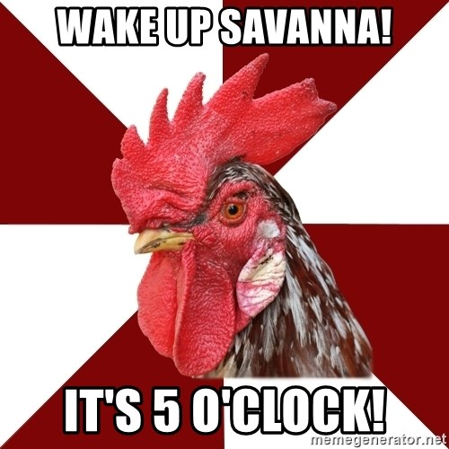 Roleplaying Rooster - Wake up Savanna! It's 5 O'clock!