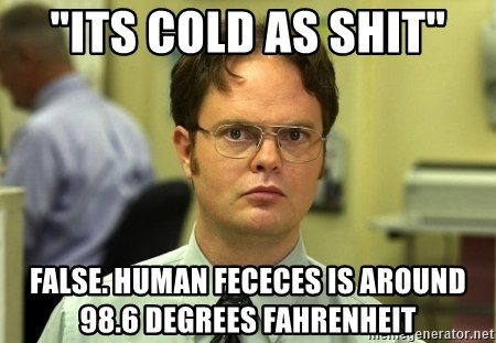 """Dwight Schrute - """"its cold as shit"""" FALSe. human fececes is around 98.6 degrees FAHRENHEIT"""