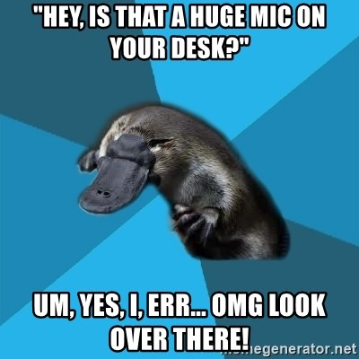 """Podfic Platypus - """"HEY, is that a huge mic on your desk?"""" Um, yes, I, err... OMG LOOK OVER THERE!"""