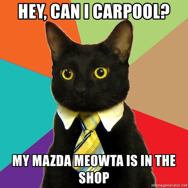 Business Cat - hey, can i carpool? My mazda meowta is in the shop