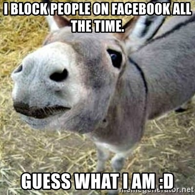 Assumptions Donkey - I block people on Facebook all the time. Guess what I am :D